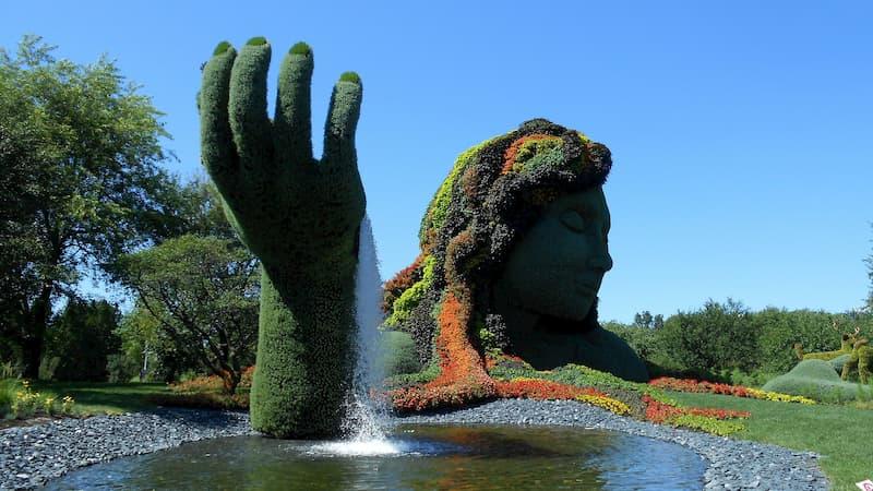 Snapshot of Botanical Garden